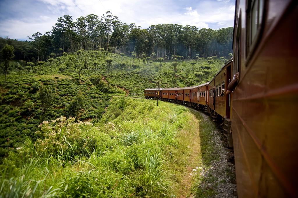 Trein van Ella naar Nuwara Eliya, binnenland Sri Lanka
